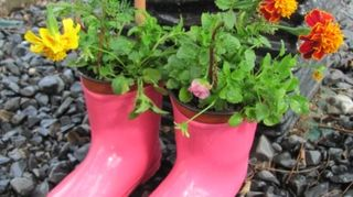 q christmas gift for an 8yr old girl, bedroom ideas, christmas decorations, crafts, how to, repurposing upcycling, seasonal holiday decor, You can also repurpose gumboots into fun colourful planters I made these tiny tot boots into flower pots for kids