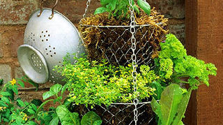 q craft ideas for 4 tiered wire basket store display, crafts, repurposing upcycling, storage ideas, Whilst this is a hanging tiered herb basket it might give you an idea of what yours could look like Via