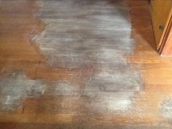 Dog Urine Stains From Hardwood Floors