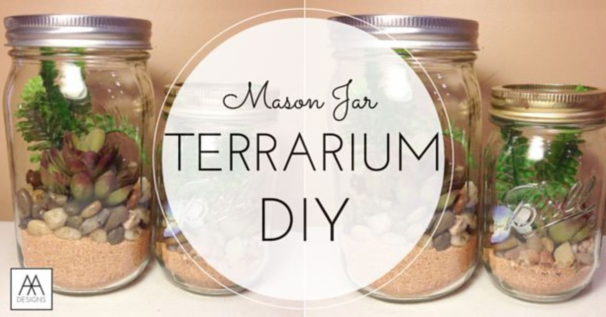Diy Mason Jar Terrarium Hometalk