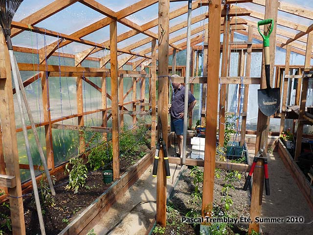 Garden Greenhouse - Indoor Design & Layout Ideas | Hometalk