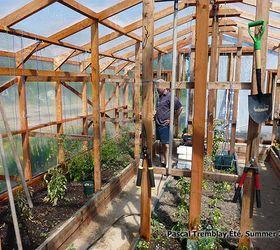 Garden Greenhouse Indoor Design Layout Ideas, Gardening, Home Decor,  Outdoor Living, Watering