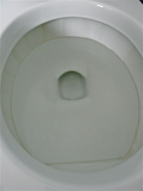 Get Rid of the Lime Scale Ring in the Toilet Bowl | Hometalk