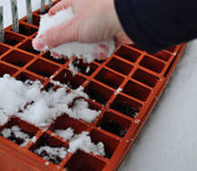 winter sowing seeds in the snow, gardening