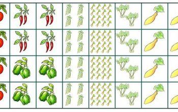 My Favorite Online Garden Planning Tools