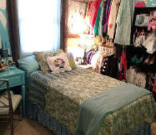 breakfast at tiffany s themed room, bedroom ideas, closet, diy, painted furniture, painting