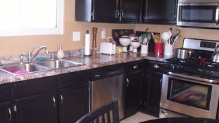q i have solid oak cabinets and want to change the look what are the pros and cons of, kitchen cabinets, painting