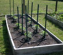 how to plan a raised bed vegetable garden, gardening, how to, raised garden beds