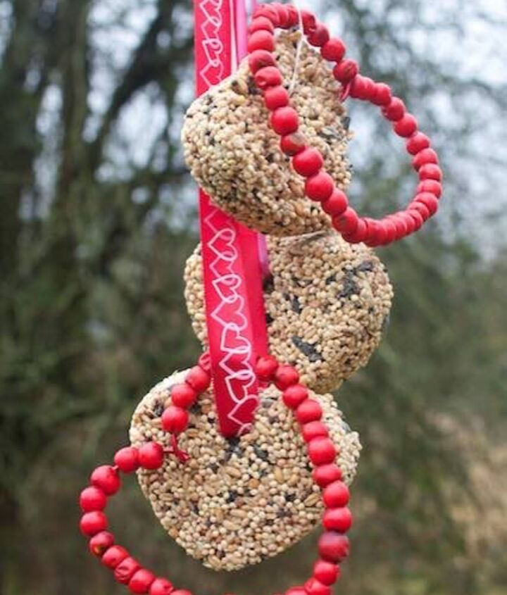 birdseed cakes and berry hearts, crafts, gardening, seasonal holiday decor, valentines day ideas