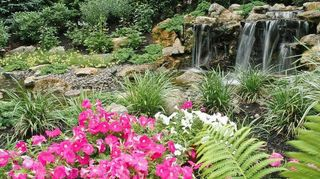 , This waterfall s pristine water is collected at end of the feature in a pondless reservoir and stored in an Aquascape RainXchange System It is constantly moving and being aerated so it naturally becomes a sanctuary for wildlife