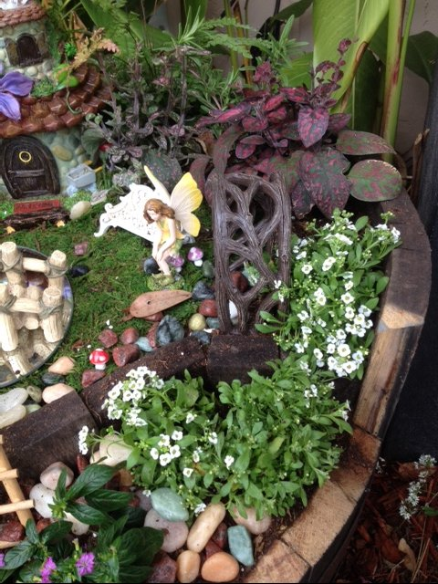 My Whiskey Barrel Fairy Garden
