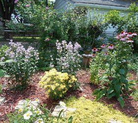Transforming My Backyard Into A Secret Garden, Flowers, Gardening, Landscape,  Outdoor Living