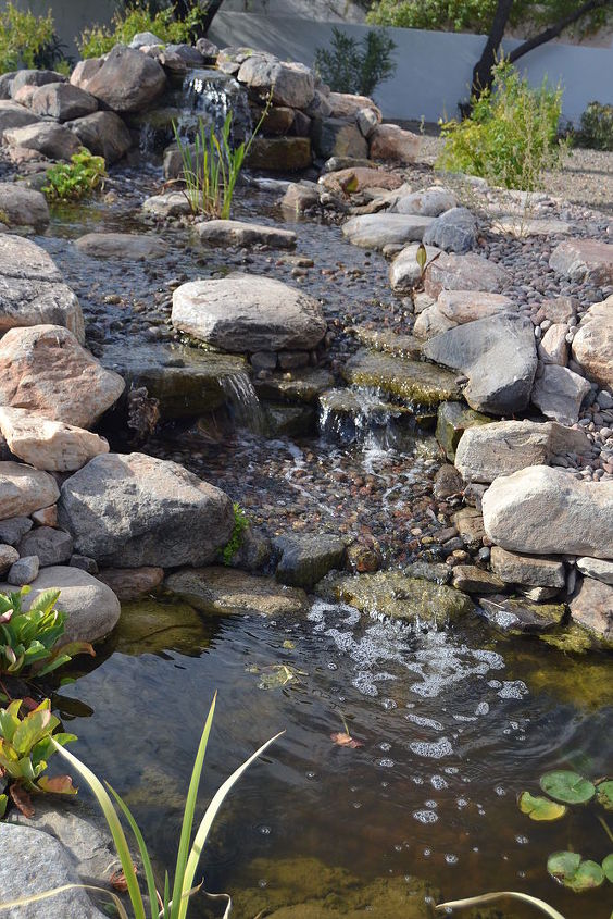 mallace, go green, landscape, outdoor living, ponds water features