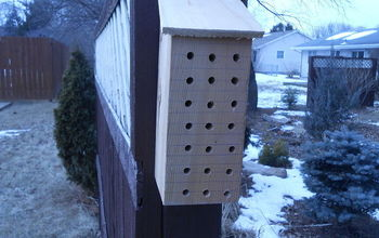 Use Scrap Wood to Make a Native Bee House