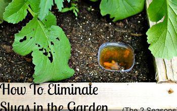 How To Eliminate Garden Slugs