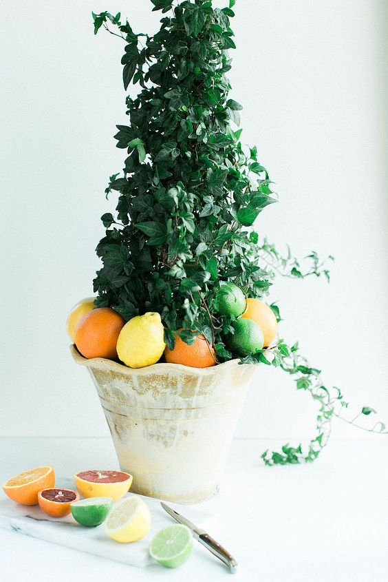 diy citrus topiary, crafts, how to, repurposing upcycling