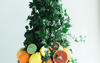 DIY Citrus Topiary
