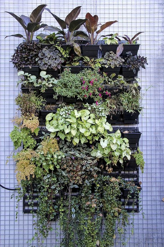How To Create A Vertical Garden Hometalk