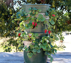 Diy Strawberry Tower With Built In Reservoir, Container Gardening, Gardening,  Homesteading, How