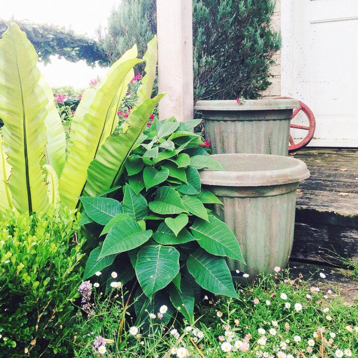 get ready for spring with the look of antique garden pots, chalk paint, container gardening, crafts, gardening