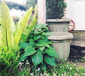 Get Ready For Spring With The Look Of Antique Garden Pots, Chalk Paint,  Container