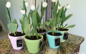 spring planter gifts, crafts, easter decorations, gardening, seasonal holiday decor