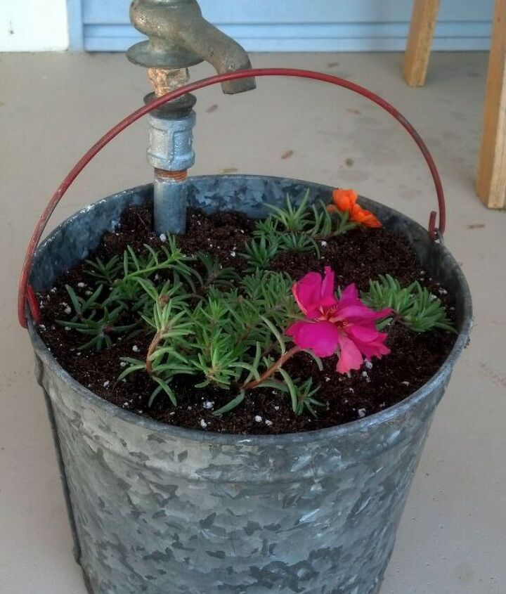 vintage bucket and faucet planter, container gardening, flowers, gardening, repurposing upcycling