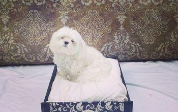 Dresser Drawer to Dog Bed