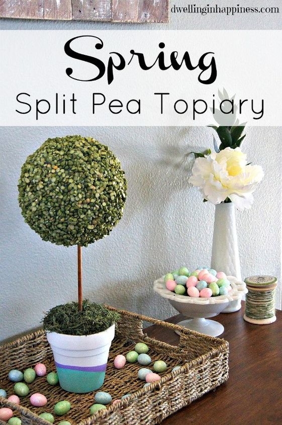 spring split pea topiary, crafts, easter decorations, how to, repurposing upcycling, seasonal holiday decor