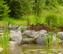 picture perfect ponds western massachusetts and northern connecticut, landscape, outdoor living, ponds water features