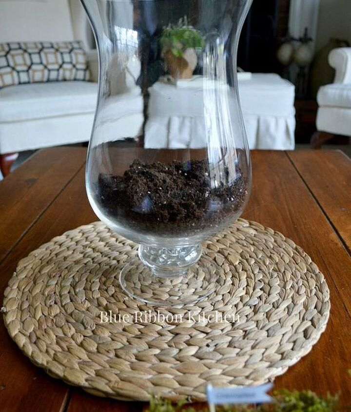 diy coffee table terrarium, container gardening, gardening, home decor, terrarium