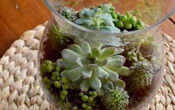 diy coffee table terrarium, container gardening, gardening, home decor, terrarium