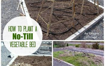 How To Plant a No-Till Garden {& Have a LOT Less Weeds!}