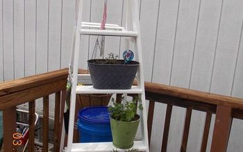 ladder herb garden, container gardening, gardening, repurposing upcycling