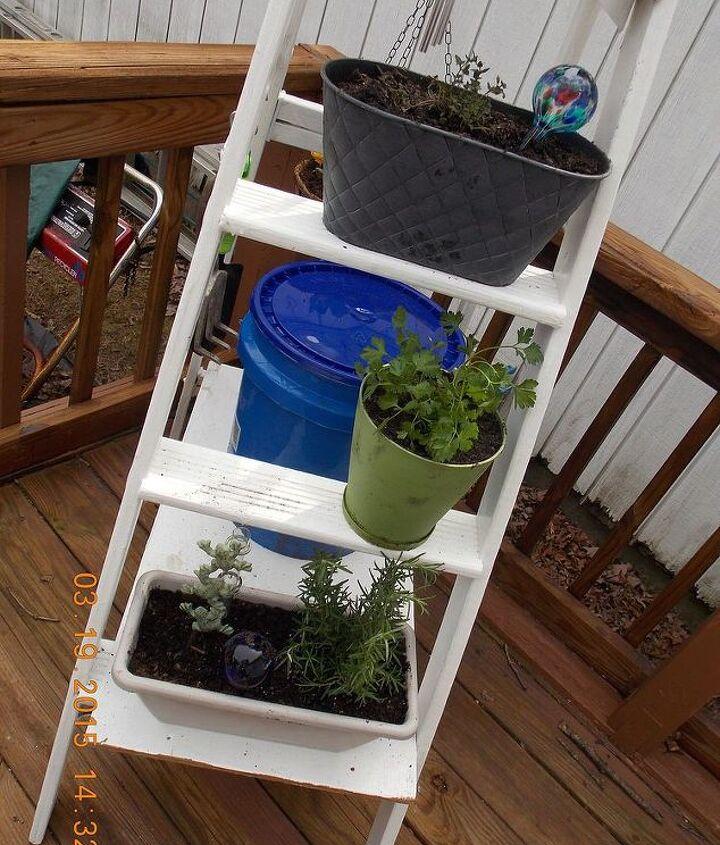 ladder herb garden, container gardening, gardening, repurposing upcycling