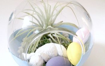DIY Easter Air Plant Terrarium