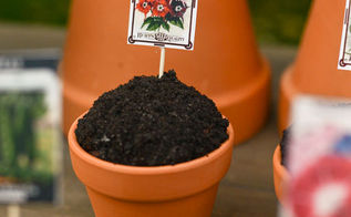 easy spring seedling garden cupcakes, crafts, how to