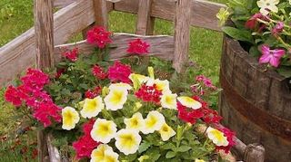 , recycle an old piece of porch furniture and plant flowers in seat