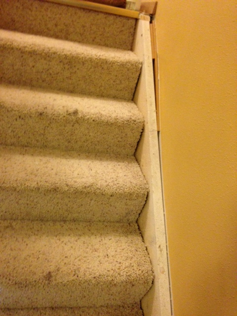 q skirt board on stairs all screwed up under the carpeting, home maintenance repairs, stairs, reupholster
