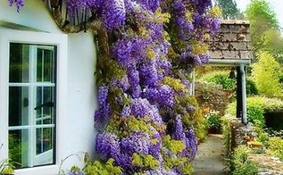 5 statement projects to help your house stand out in a good way, curb appeal, doors, flowers, gardening, paint colors, painting, Best gardenfertilizer com via Pinterest