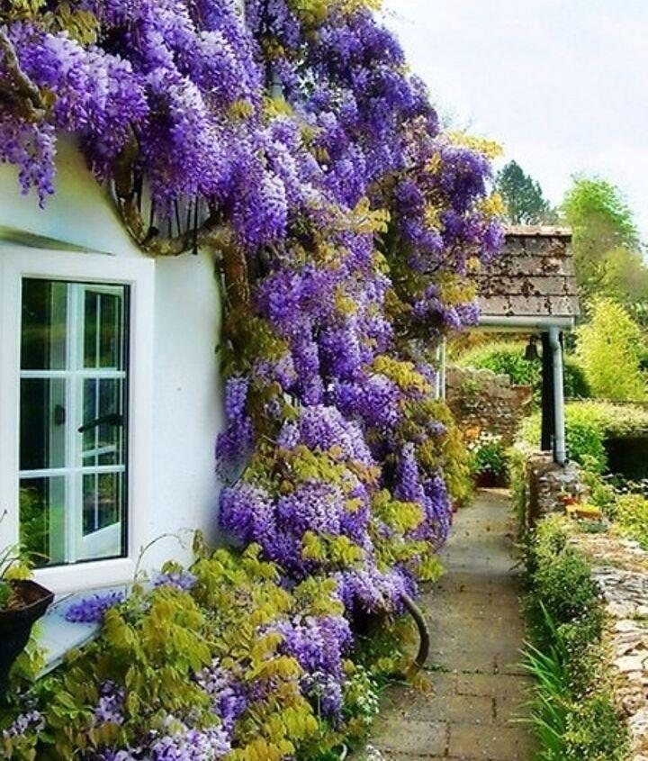 Best-gardenfertilizer.com via Pinterest