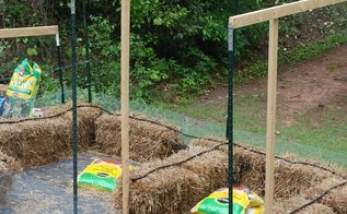straw bale garden update and some garden cuteness, crafts, gardening, raised garden beds