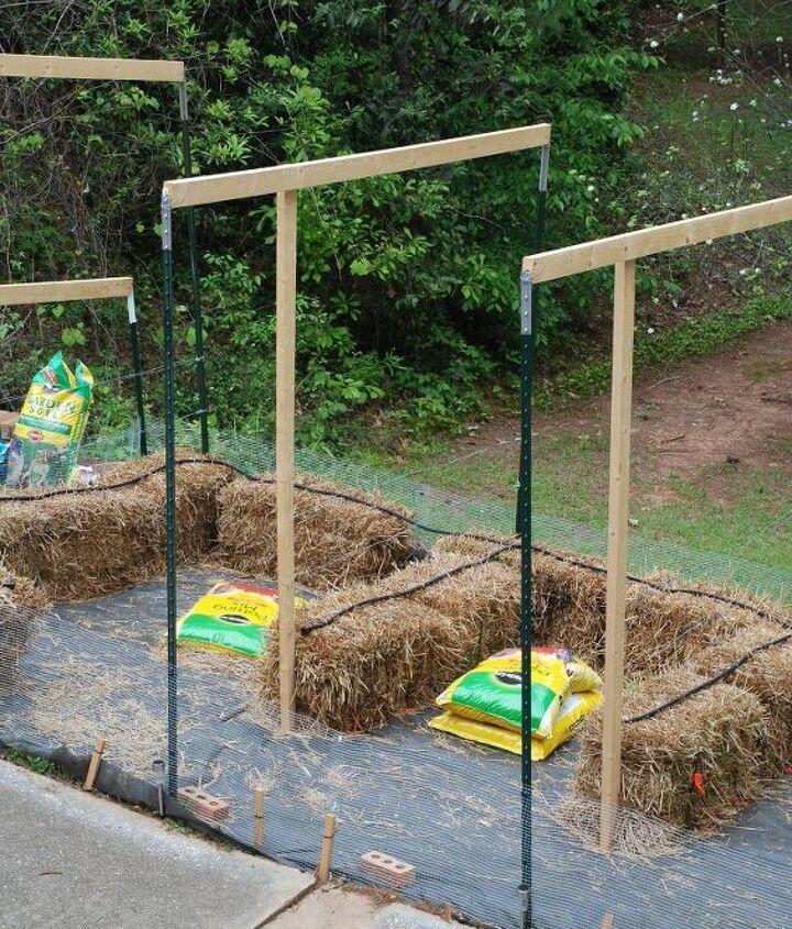 straw bale garden update and some garden cuteness, crafts, gardening, raised garden beds