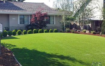 global syn turf artificial grass in palo alto ca, landscape, lawn care
