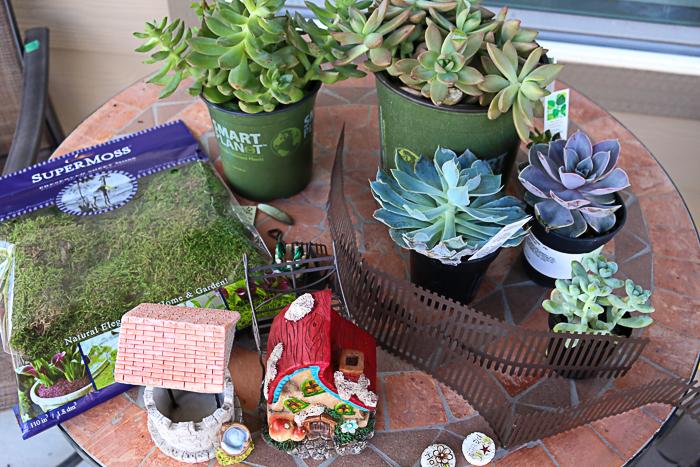 succulent fairy garden, container gardening, flowers, gardening, how to, succulents