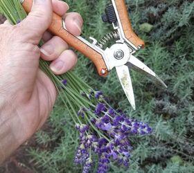 My Landscape Garden Essentials, Gardening, Homesteading, Landscape, Tools