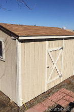 tool shed to craft room, craft rooms, crafts, organizing, outdoor living, repurposing upcycling, storage ideas, The 8x12 shed