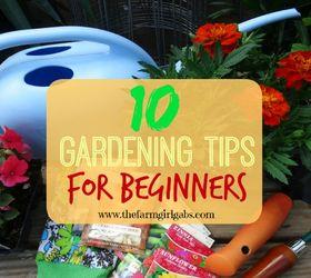 10 Gardening Tips For Beginners, Container Gardening, Flowers, Gardening,  Homesteading