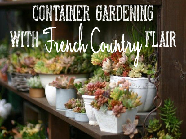container gardening with french country flair, container gardening, flowers, gardening, outdoor living, repurposing upcycling
