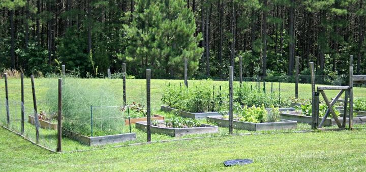 How to Plan a Raised Bed Vegetable Garden – Planning A Raised Bed Vegetable Garden